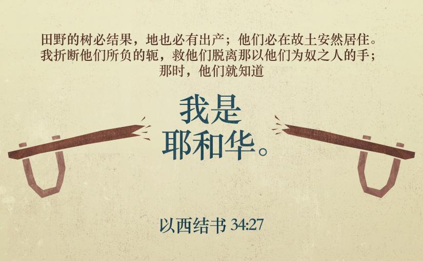 以西结书34:27