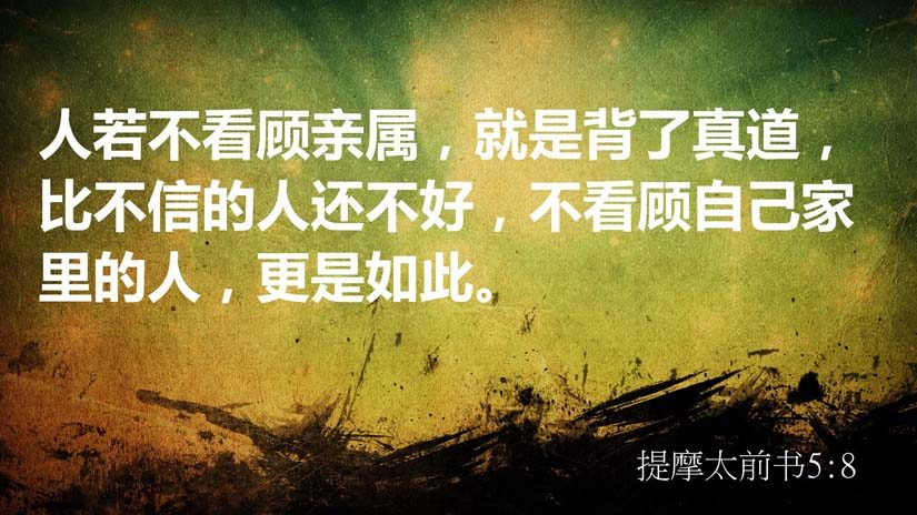 提摩太前书5:8