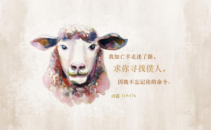 0045坐在宝座上圣洁羔羊